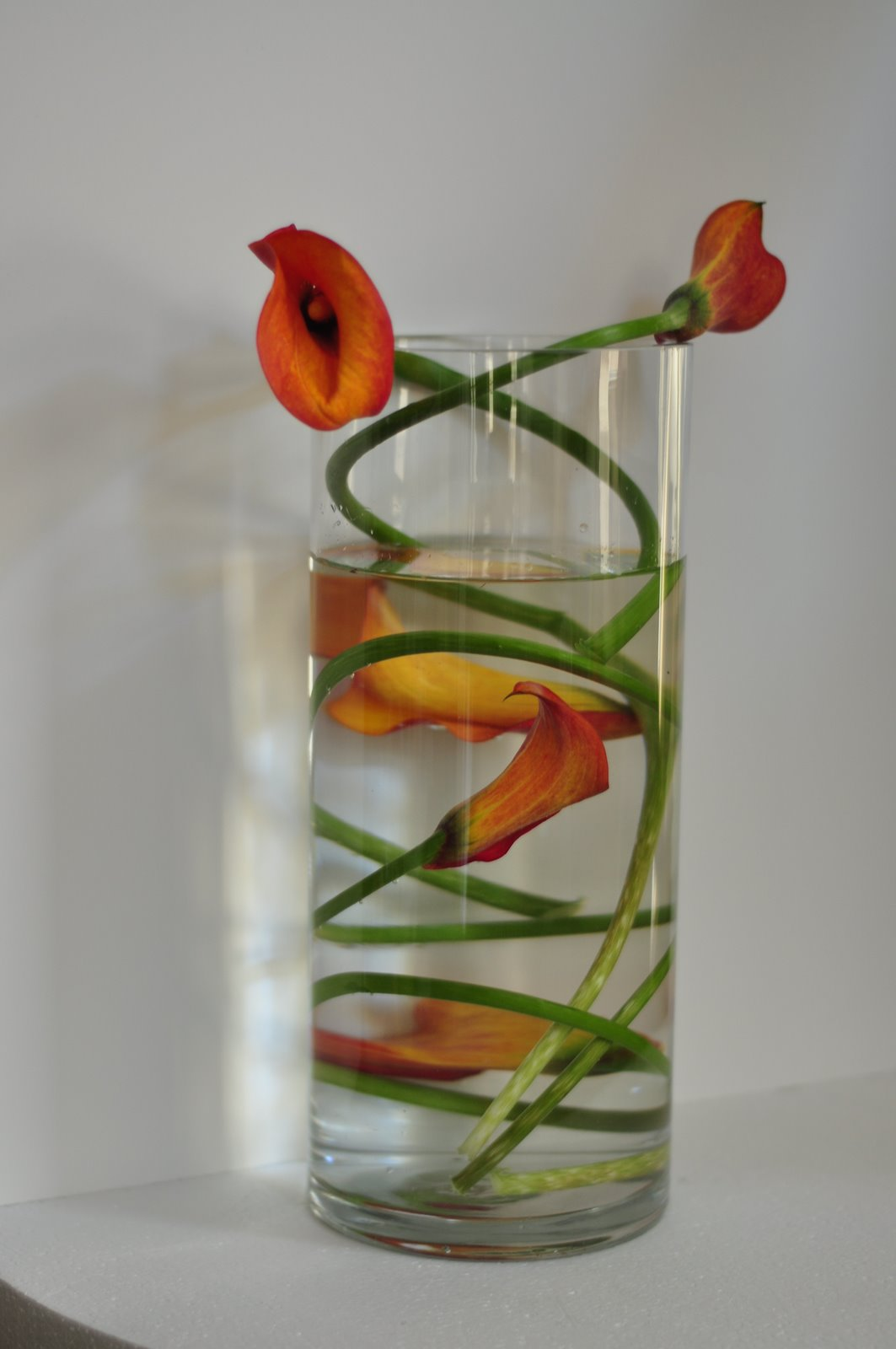 Calla lilies ideal floral art event design